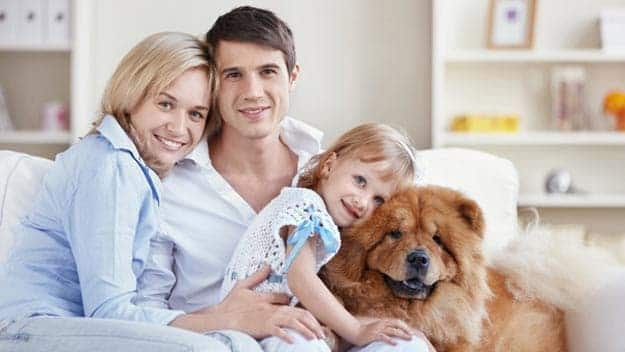Wills & Trusts dog-young-family Direct Wills Bicester